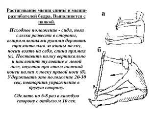 Растягивание мышц спины и мышц-разгибателей бедра. Выполняется с палкой. Исходно