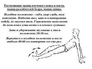 Растягивание мышц плечевого пояса и плеча, мышц-разгибателей бедра, мышц спины.