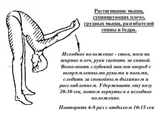 Растягивание мышц, супинирующих плечо, грудных мышц, разгибателей спины и бедра.