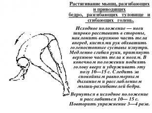 Растягивание мышц, разгибающих и приводящих бедро, разгибающих туловище и сгибаю