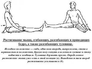 а б Растягивание мышц, сгибающих, разгибающих и приводящих бедро, а также разгиб