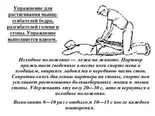 Упражнение для растягивания мышц-сгибателей бедра, разгибателей голени и стопы.