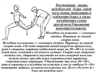 Растягивание мышц-разгибателей бедра одной ноги, мышц, приводящих и сгибающих б