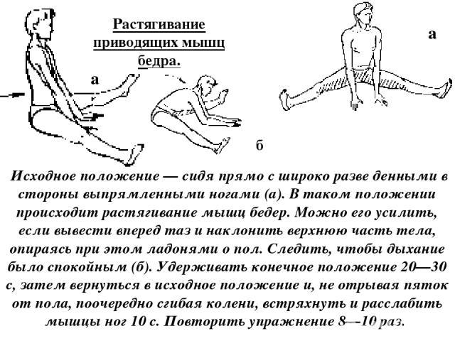 Исходное положение — сидя прямо с широко разве денными в стороны выпрямленными ногами (а). В таком положении происходит растягивание мышц бедер. Можно его усилить, если вывести вперед таз и наклонить верхнюю часть тела, опираясь при этом ладонями о…