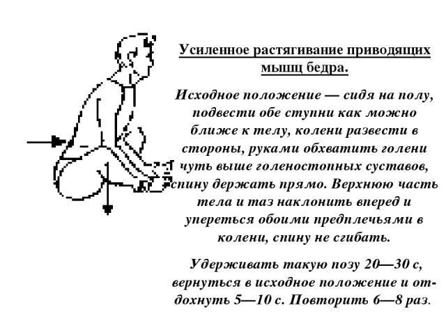 Усиленное растягивание приводящих мышц бедра. Исходное положение — сидя на полу, подвести обе ступни как можно ближе к телу, колени развести в стороны, руками обхватить голени чуть выше голеностопных суставов, спину держать прямо. Верхнюю часть тела…