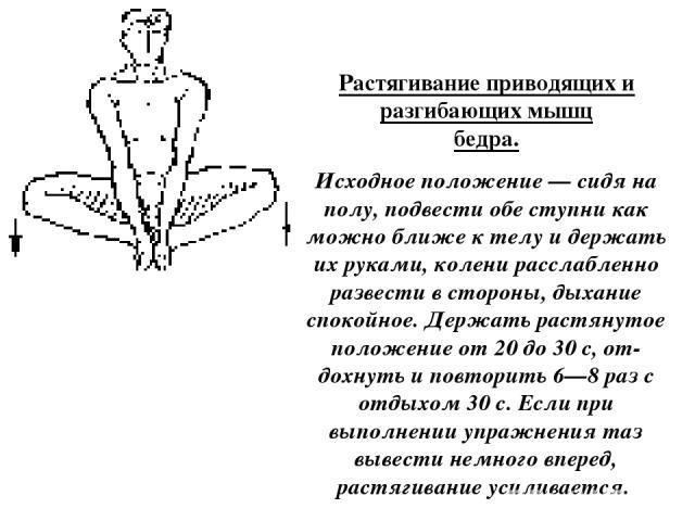 Растягивание приводящих и разгибающих мышц бедра. Исходное положение — сидя на полу, подвести обе ступни как можно ближе к телу и держать их руками, колени расслабленно развести в стороны, дыхание спокойное. Держать растянутое положение от 20 до 30 …