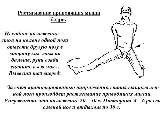 Растягивание приводящих мышц бедра. Исходное положение — стоя на колене одной ноги отвести другую ногу в сторону как можно дальше, руки сзади сцепить в «замок». Вывести таз вперед. За счет кратковременного напряжения стопы выпрямлен ной ноги произой…