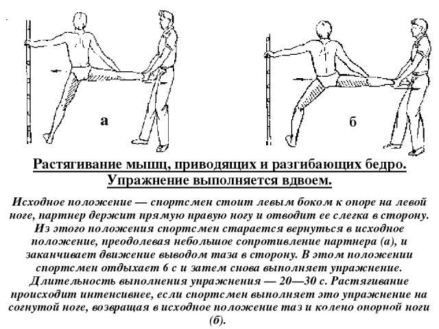 Растягивание мышц, приводящих и разгибающих бедро. Упражнение выполняется вдвоем. Исходное положение — спортсмен стоит левым боком к опоре на левой ноге, партнер держит прямую правую ногу и отводит ее слегка в сторону. Из этого положения спортсмен с…