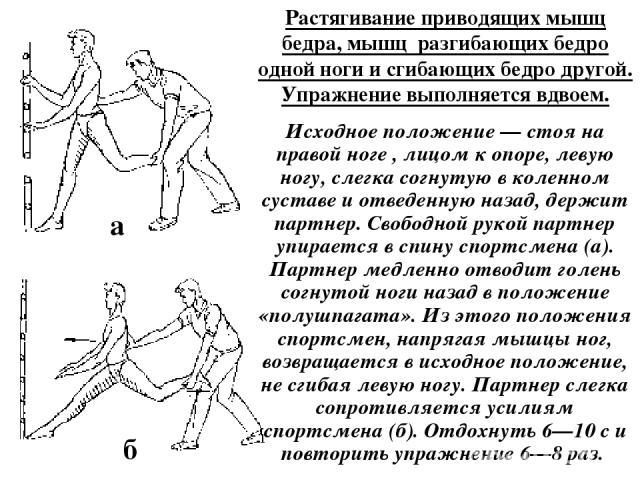 Растягивание приводящих мышц бедра, мышц разгибающих бедро одной ноги и сгибающих бедро другой. Упражнение выполняется вдвоем. Исходное положение — стоя на правой ноге , лицом к опоре, левую ногу, слегка согнутую в коленном суставе и отведенную наза…