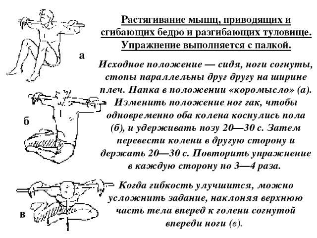 Растягивание мышц, приводящих и сгибающих бедро и разгибающих туловище. Упражнение выполняется с палкой. Исходное положение — сидя, ноги согнуты, стопы параллельны друг другу на ширине плеч. Папка в положении «коромысло» (а). Изменить положение ног …