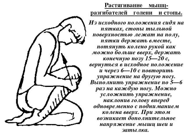 Растягивание мышц-разгибателей голени и стопы. Из исходного положения сидя на пятках, стопы тыльной поверхностью лежат на полу, пятки держать вместе, потянуть колено рукой как можно больше вверх, держать конечную позу 15—20 с, вернуться в исходное п…