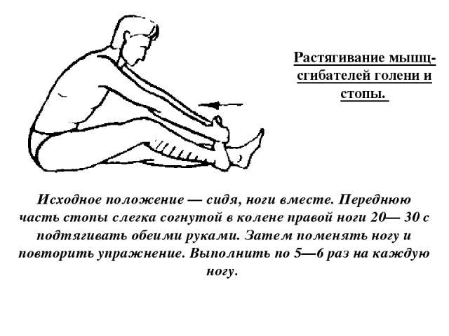 Растягивание мышц-сгибателей голени и стопы. Исходное положение — сидя, ноги вместе. Переднюю часть стопы слегка согнутой в колене правой ноги 20— 30 с подтягивать обеими руками. Затем поменять ногу и повторить упражнение. Выполнить по 5—6 раз на ка…