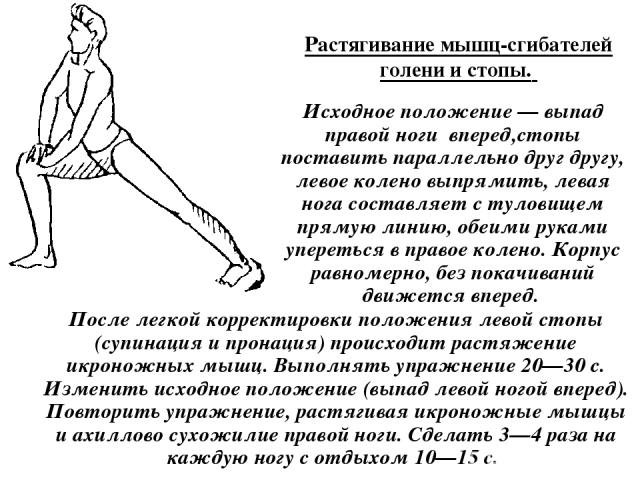 Растягивание мышц-сгибателей голени и стопы. Исходное положение — выпад правой ноги вперед,стопы поставить параллельно друг другу, левое колено выпрямить, левая нога составляет с туловищем прямую линию, обеими руками упереться в правое колено. Корпу…