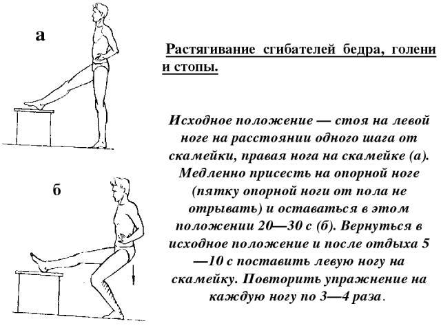 а б Растягивание сгибателей бедра, голени и стопы. Исходное положение — стоя на левой ноге на расстоянии одного шага от скамейки, правая нога на скамейке (а). Медленно присесть на опорной ноге (пятку опорной ноги от пола не отрывать) и оставаться в…