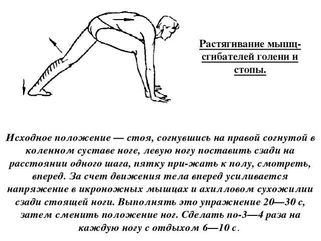 Растягивание мышц-сгибателей голени и стопы. Исходное положение — стоя, согнувшись на правой согнутой в коленном суставе ноге, левую ногу поставить сзади на расстоянии одного шага, пятку при жать к полу, смотреть, вперед. За счет движения тела впере…