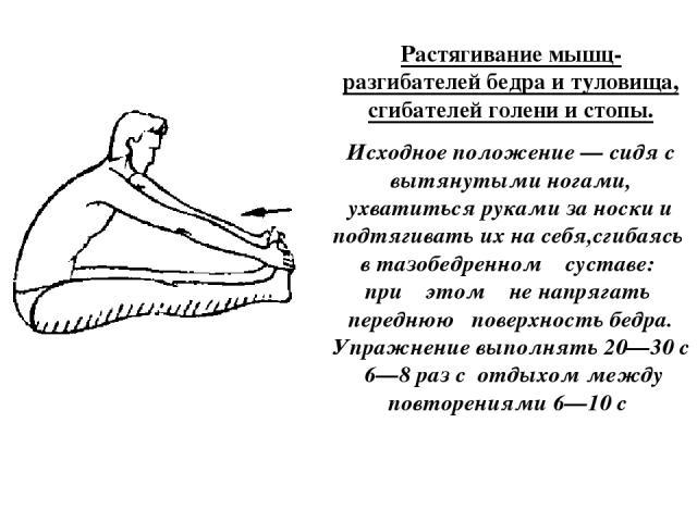 Растягивание мышц-разгибателей бедра и туловища, сгибателей голени и стопы. Исходное положение — сидя с вытянутыми ногами, ухватиться руками за носки и подтягивать их на себя,сгибаясь в тазобедренном суставе: при этом не напрягать переднюю поверхнос…