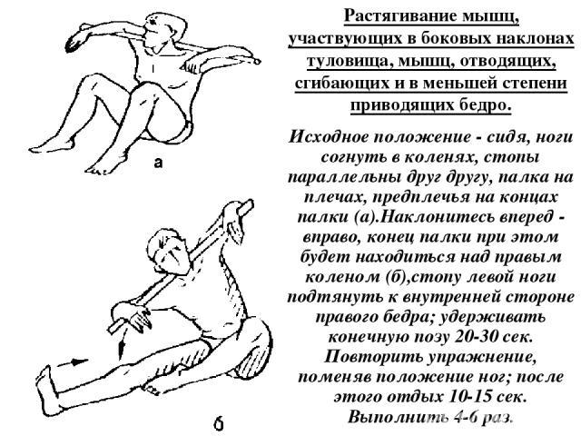 Растягивание мышц, участвующих в боковых наклонах туловища, мышц, отводящих, сгибающих и в меньшей степени приводящих бедро. Исходное положение - сидя, ноги согнуть в коленях, стопы параллельны друг другу, палка на плечах, предплечья на концах палки…