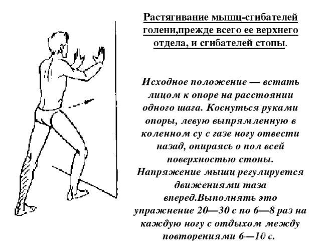 Растягивание мышц-сгибателей голени,прежде всего ее верхнего отдела, и сгибателей стопы. Исходное положение — встать лицом к опоре на расстоянии одного шага. Коснуться руками опоры, левую выпрямленную в коленном су с газе ногу отвести назад, опираяс…
