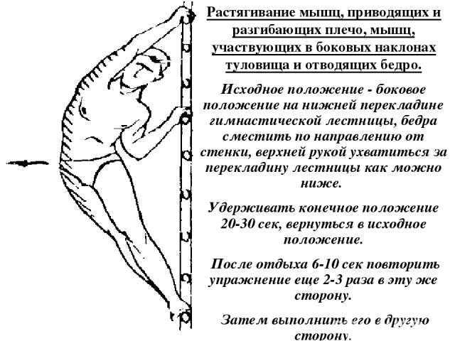 Растягивание мышц, приводящих и разгибающих плечо, мышц, участвующих в боковых наклонах туловища и отводящих бедро. Исходное положение - боковое положение на нижней перекладине гимнастической лестницы, бедра сместить по направлению от стенки, верхне…