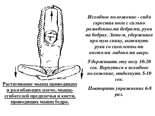 Растягивание мышц приводящих и разгибающих плечо, мышц-сгибателей предплечья и кисти, приводящих мышц бедра. Исходное положение - сидя скрестив ноги с сильно разведенными бедрами, руки на бедрах. Затем, удерживая прямую спину, вытянуть руки со сцепл…