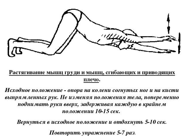 Растягивание мышц груди и мышц, сгибающих и приводящих плечо. Исходное положение - опора на колени согнутых ног и на кисти выпрямленных рук. Не изменяя положения тела, попеременно поднимать руки вверх, задерживая каждую в крайнем положении 10-15 сек…