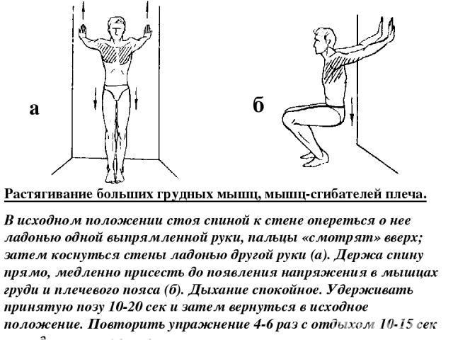 Растягивание больших грудных мышц, мышц-сгибателей плеча. В исходном положении стоя спиной к стене опереться о нее ладонью одной выпрямленной руки, пальцы «смотрят» вверх; затем коснуться стены ладонью другой руки (а). Держа спину прямо, медленно пр…