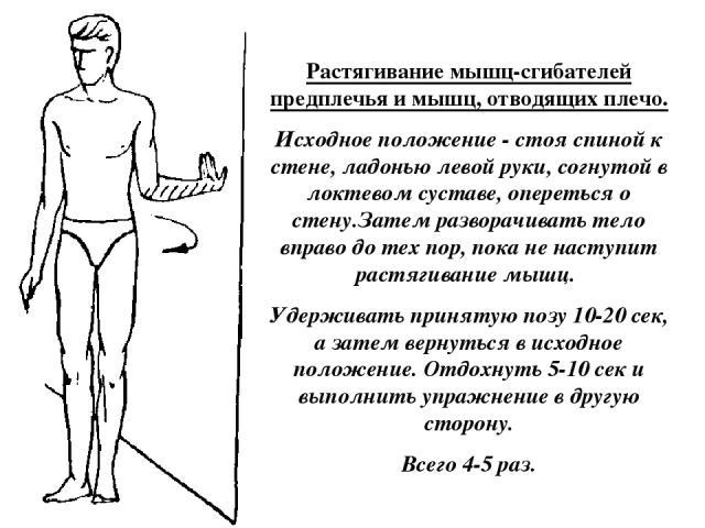 Растягивание мышц-сгибателей предплечья и мышц, отводящих плечо. Исходное положение - стоя спиной к стене, ладонью левой руки, согнутой в локтевом суставе, опереться о стену.Затем разворачивать тело вправо до тех пор, пока не наступит растягивание м…