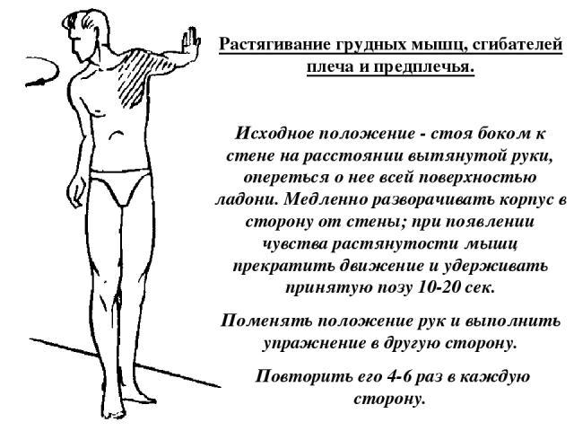 Растягивание грудных мышц, сгибателей плеча и предплечья. Исходное положение - стоя боком к стене на расстоянии вытянутой руки, опереться о нее всей поверхностью ладони. Медленно разворачивать корпус в сторону от стены; при появлении чувства растяну…