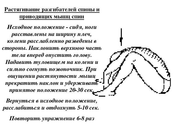 Растягивание разгибателей спины и приводящих мышц спин Исходное положение - сидя, ноги расставлены на ширину плеч, колени расслабленно разведены в стороны. Наклонить верхнюю часть тела вперед опустить голову. Надавить туловищем на колени и сильно со…