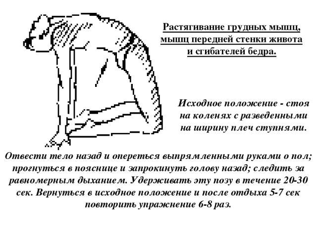 Растягивание грудных мышц, мышц передней стенки живота и сгибателей бедра. Исходное положение - стоя на коленях с разведенными на ширину плеч ступнями. Отвести тело назад и опереться выпрямленными руками о пол; прогнуться в пояснице и запрокинуть го…