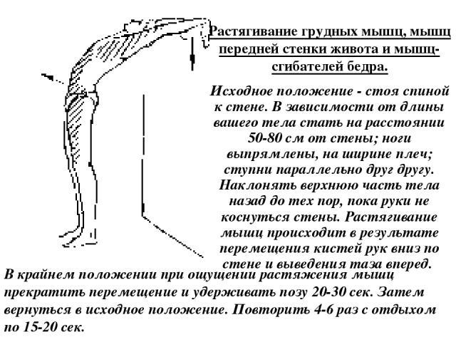 Растягивание грудных мышц, мышц передней стенки живота и мышц-сгибателей бедра. Исходное положение - стоя спиной к стене. В зависимости от длины вашего тела стать на расстоянии 50-80 см от стены; ноги выпрямлены, на ширине плеч; ступни параллельно д…