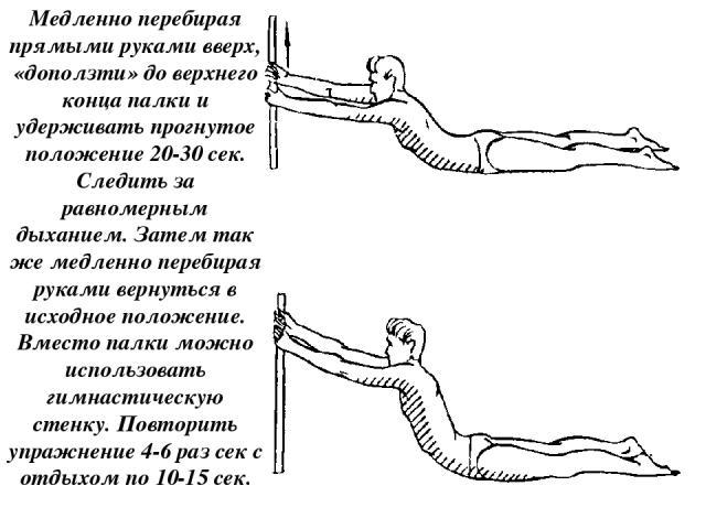 Медленно перебирая прямыми руками вверх, «доползти» до верхнего конца палки и удерживать прогнутое положение 20-30 сек. Следить за равномерным дыханием. Затем так же медленно перебирая руками вернуться в исходное положение. Вместо палки можно исполь…