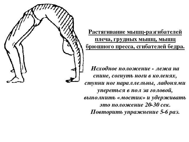 Растягивание мышц-разгибателей плеча, грудных мышц, мышц брюшного пресса, сгибателей бедра. Исходное положение - лежа на спине, согнуть ноги в коленях, ступни ног параллельны, ладонями упереться в пол за головой, выполнить «мостик» и удерживать это …