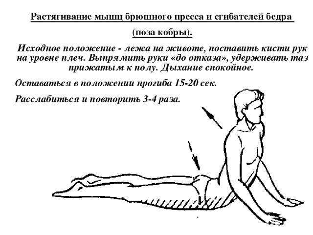 Растягивание мышц брюшного пресса и сгибателей бедра (поза кобры). Исходное положение - лежа на животе, поставить кисти рук на уровне плеч. Выпрямить руки «до отказа», удерживать таз прижатым к полу. Дыхание спокойное. Оставаться в положении прогиба…