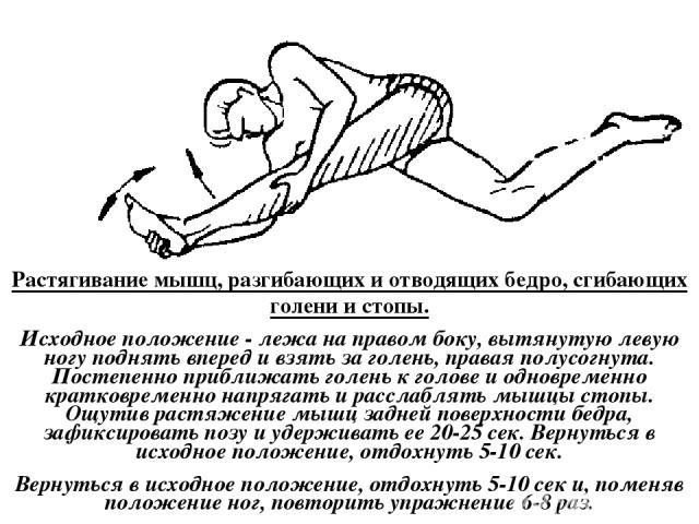 Растягивание мышц, разгибающих и отводящих бедро, сгибающих голени и стопы. Исходное положение - лежа на правом боку, вытянутую левую ногу поднять вперед и взять за голень, правая полусогнута. Постепенно приближать голень к голове и одновременно кра…