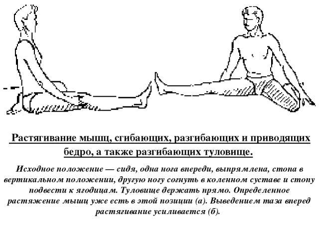 а б Растягивание мышц, сгибающих, разгибающих и приводящих бедро, а также разгибающих туловище. Исходное положение — сидя, одна нога впереди, выпрямлена, стопа в вертикальном положении, другую ногу согнуть в коленном суставе и стопу подвести к ягоди…