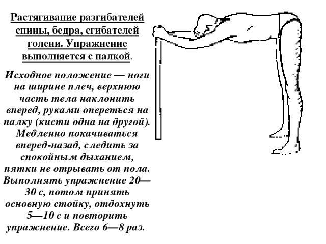 Растягивание разгибателей спины, бедра, сгибателей голени. Упражнение выполняется с палкой. Исходное положение — ноги на ширине плеч, верхнюю часть тела наклонить вперед, руками опереться на палку (кисти одна на другой). Медленно покачиваться вперед…
