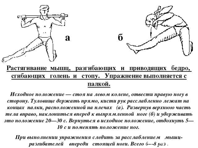 Растягивание мышц, разгибающих и приводящих бедро, сгибающих голень и стопу. Упражнение выполняется с палкой. Исходное положение — стоя на левом колене, отвести правую ногу в сторону. Туловище держать прямо, кисти рук расслабленно лежат на концах па…