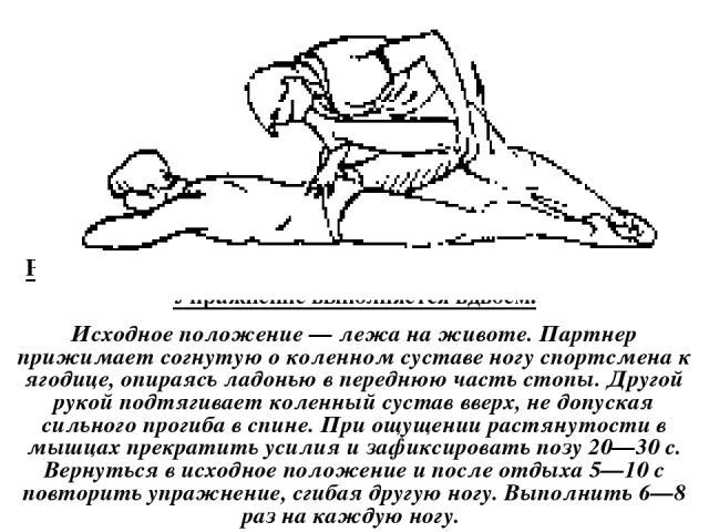 Растягивание мышц-сгибателей бедра и разгибателей голени. Упражнение выполняется вдвоем. Исходное положение — лежа на животе. Партнер прижимает согнутую о коленном суставе ногу спортсмена к ягодице, опираясь ладонью в переднюю часть стопы. Другой ру…
