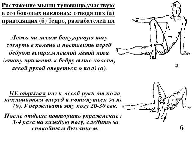 Растяжение мышц туловища,участвующих в его боковых наклонах; отводящих (а) и приводящих (б) бедро, разгибателей плеча. Лежа на левом боку,правую ногу согнуть в колене и поставить перед бедром выпрямленной левой ноги (стопу прижать к бедру выше колен…