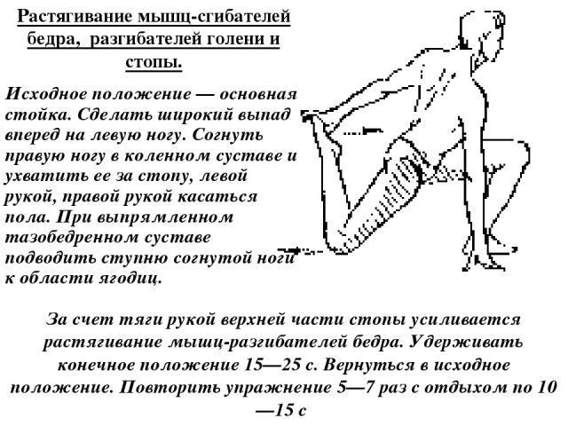 Растягивание мышц-сгибателей бедра, разгибателей голени и стопы. Исходное положение — основная стойка. Сделать широкий выпад вперед на левую ногу. Согнуть правую ногу в коленном суставе и ухватить ее за стопу, левой рукой, правой рукой касаться пола…