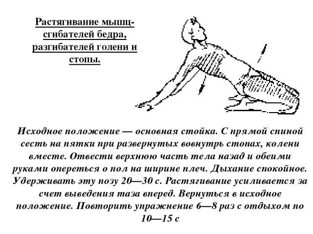 Растягивание мышц-сгибателей бедра, разгибателей голени и стопы. Исходное положение — основная стойка. С прямой спиной сесть на пятки при развернутых вовнутрь стопах, колени вместе. Отвести верхнюю часть тела назад и обеими руками опереться о пол на…