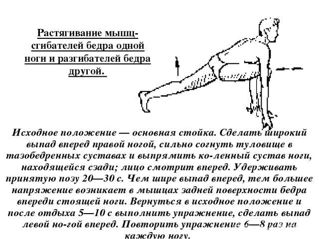 Растягивание мышц-сгибателей бедра одной ноги и разгибателей бедра другой. Исходное положение — основная стойка. Сделать широкий выпад вперед правой ногой, сильно согнуть туловище в тазобедренных суставах и выпрямить ко ленный сустав ноги, находящей…