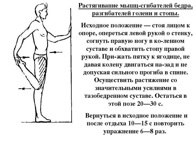 Растягивание мышц-сгибателей бедра, разгибателей голени и стопы. Исходное положение — стоя лицом к опоре, опереться левой рукой о стенку, согнуть правую ногу в ко ленном суставе и обхватить стопу правой рукой. При жать пятку к ягодице, не давая коле…
