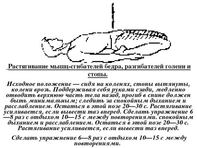 Растягивание мышц-сгибателей бедра, разгибателей голени и стопы. Исходное положение — сидя на коленях, стопы вытянуты, колени врозь. Поддерживая себя руками сзади, медленно отводить верхнюю часть тела назад, прогиб в спине должен быть минимальным; …