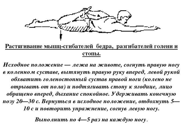 Растягивание мышц-сгибателей бедра, разгибателей голени и стопы. Исходное положение — лежа на животе, согнуть правую ногу в коленном суставе, вытянуть правую руку вперед, левой рукой обхватить голеностопный сустав правой ноги (колено не отрывать от …
