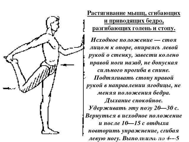 Растягивание мышц, сгибающих и приводящих бедро, разгибающих голень и стопу. Исходное положение — стоя лицом к опоре, опираясь левой рукой о стенку, завести колено правой ноги назад, не допуская сильного прогиба в спине. Подтягивать стопу правой рук…