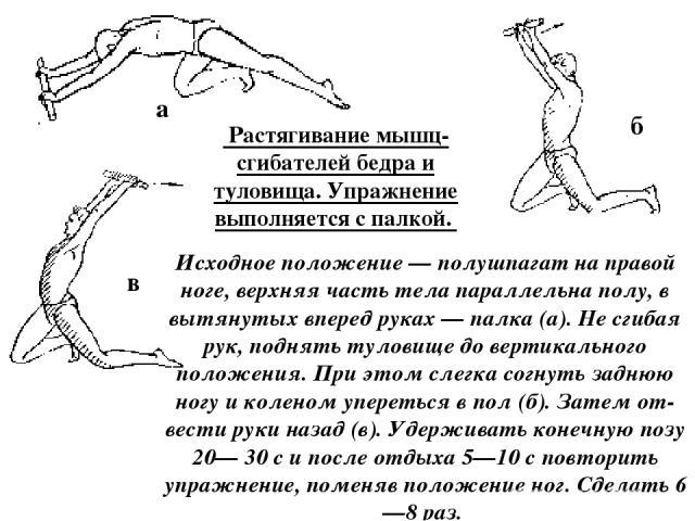 Растягивание мышц-сгибателей бедра и туловища. Упражнение выполняется с палкой. Исходное положение — полушпагат на правой ноге, верхняя часть тела параллельна полу, в вытянутых вперед руках — палка (а). Не сгибая рук, поднять туловище до вертикальн…