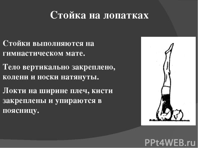 Стойка на лопатках Стойки выполняются на гимнастическом мате. Тело вертикально закреплено, колени и носки натянуты. Локти на ширине плеч, кисти закреплены и упираются в поясницу.