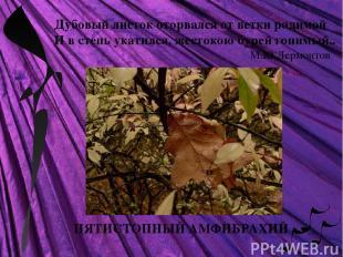 ПЯТИСТОПНЫЙ АМФИБРАХИЙ Дубовый листок оторвался от ветки родимой И в степь укати